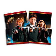Painel Decorativo Retangular 126x88cm Harry Potter - Festcolor Un